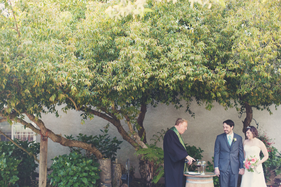 Elopement in Napa - Vineyard ©AnneClaireBrun015