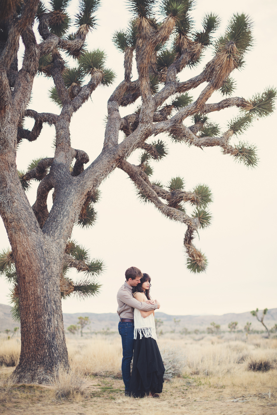 Joshua Tree Love ©Anne-Claire Brun100