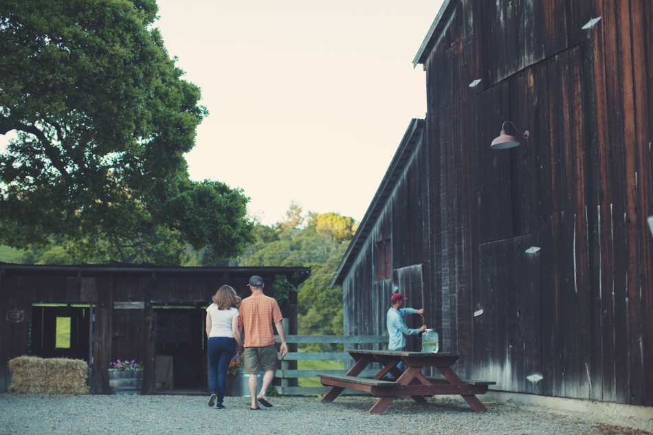 Barn wedding Bolinas - Mann Family Farm ©Anne-Claire Brun0005