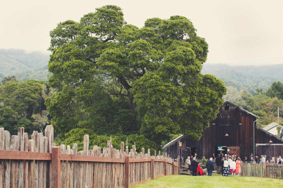 Barn wedding Bolinas - Mann Family Farm ©Anne-Claire Brun0059