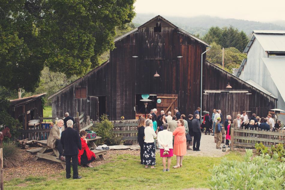 Barn wedding Bolinas - Mann Family Farm ©Anne-Claire Brun0060