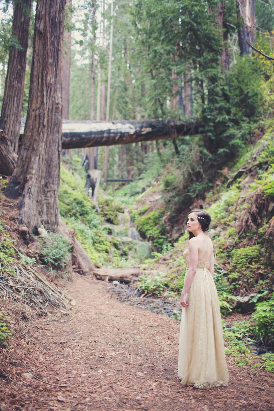 Elopement in Big Sur © Anne-Claire Brun 0044