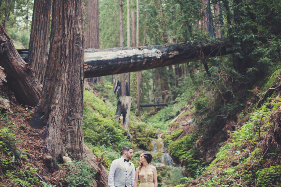 Elopement in Big Sur © Anne-Claire Brun 0088