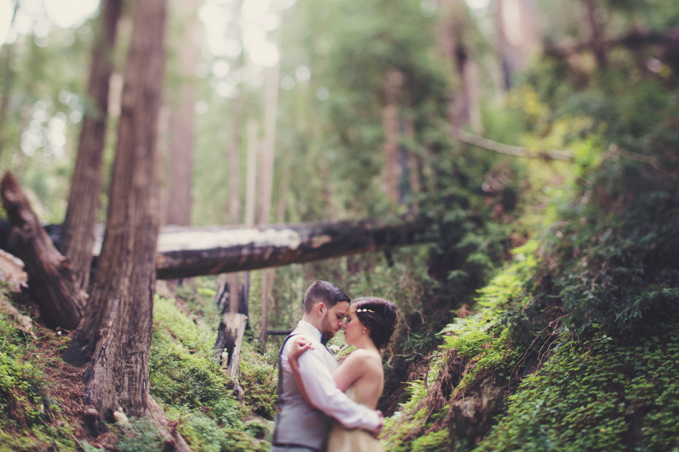 Elopement in Big Sur © Anne-Claire Brun 0097