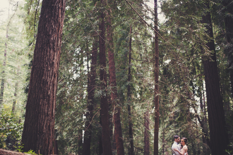 Elopement in Big Sur © Anne-Claire Brun 0100