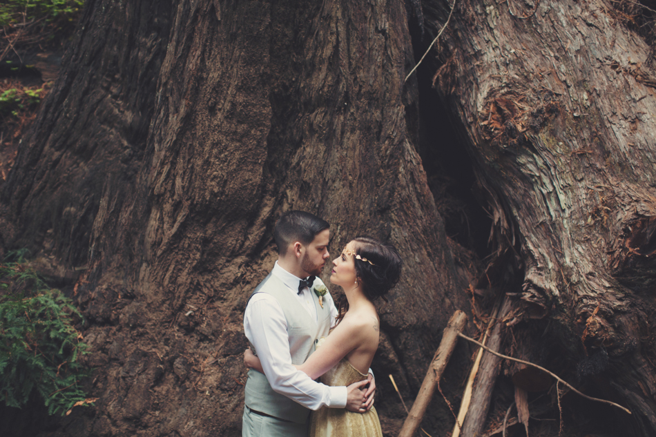 Elopement in Big Sur © Anne-Claire Brun 0105