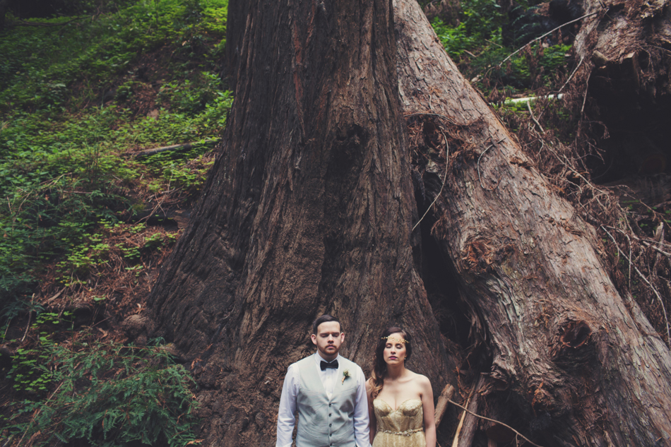 Elopement in Big Sur © Anne-Claire Brun 0108