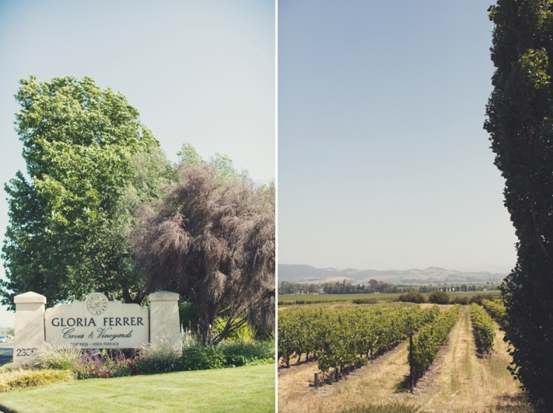 Gloria Ferrer Wedding Elopement in Napa Vineyard ©Anne-Claire Brun 0007