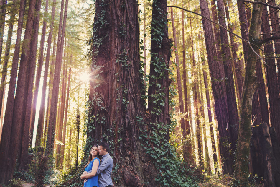 Engagement session in Sonoma County @Anne-Claire Brun 0008