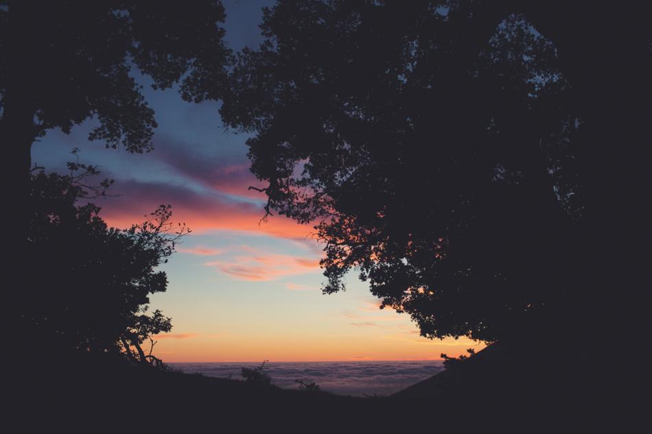 Mount Tamalpais Couple photos by Anne-Claire Brun0049