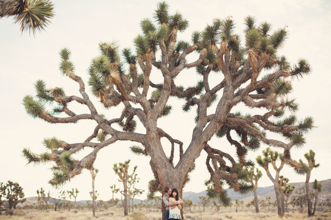 Joshua Tree Wedding Photographer @ Anne-Claire Brun 0015
