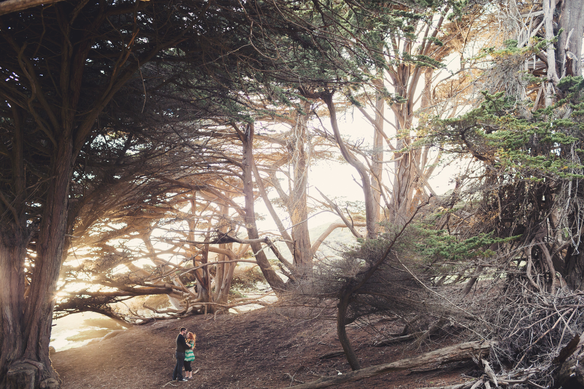 Engagement photos in Big Sur @Anne-Claire Brun 0011