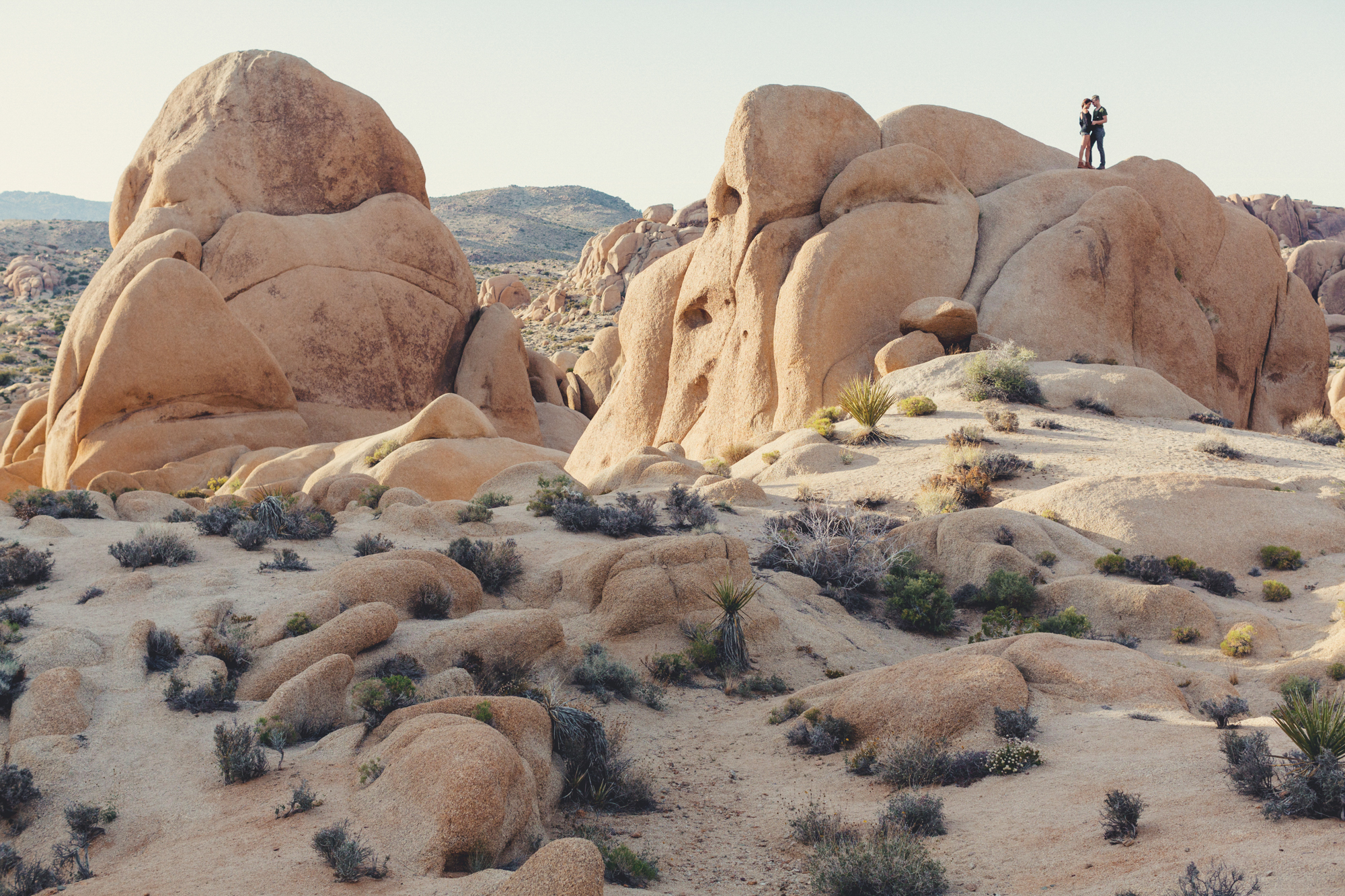 Joshua Tree Engagement Session @Anne-Claire Brun -7