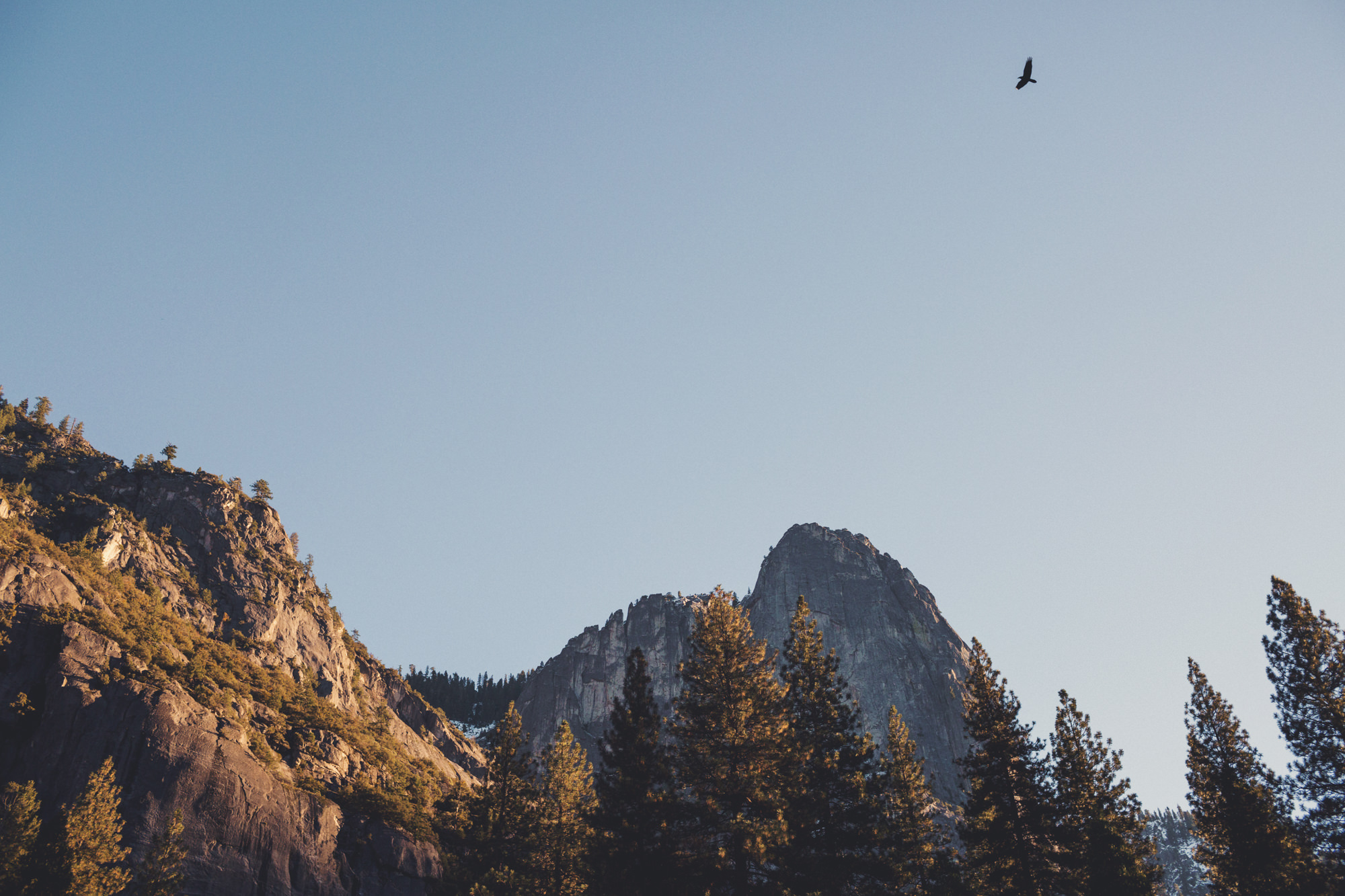 Yosemite wedding ©Anne-Claire Brun 09
