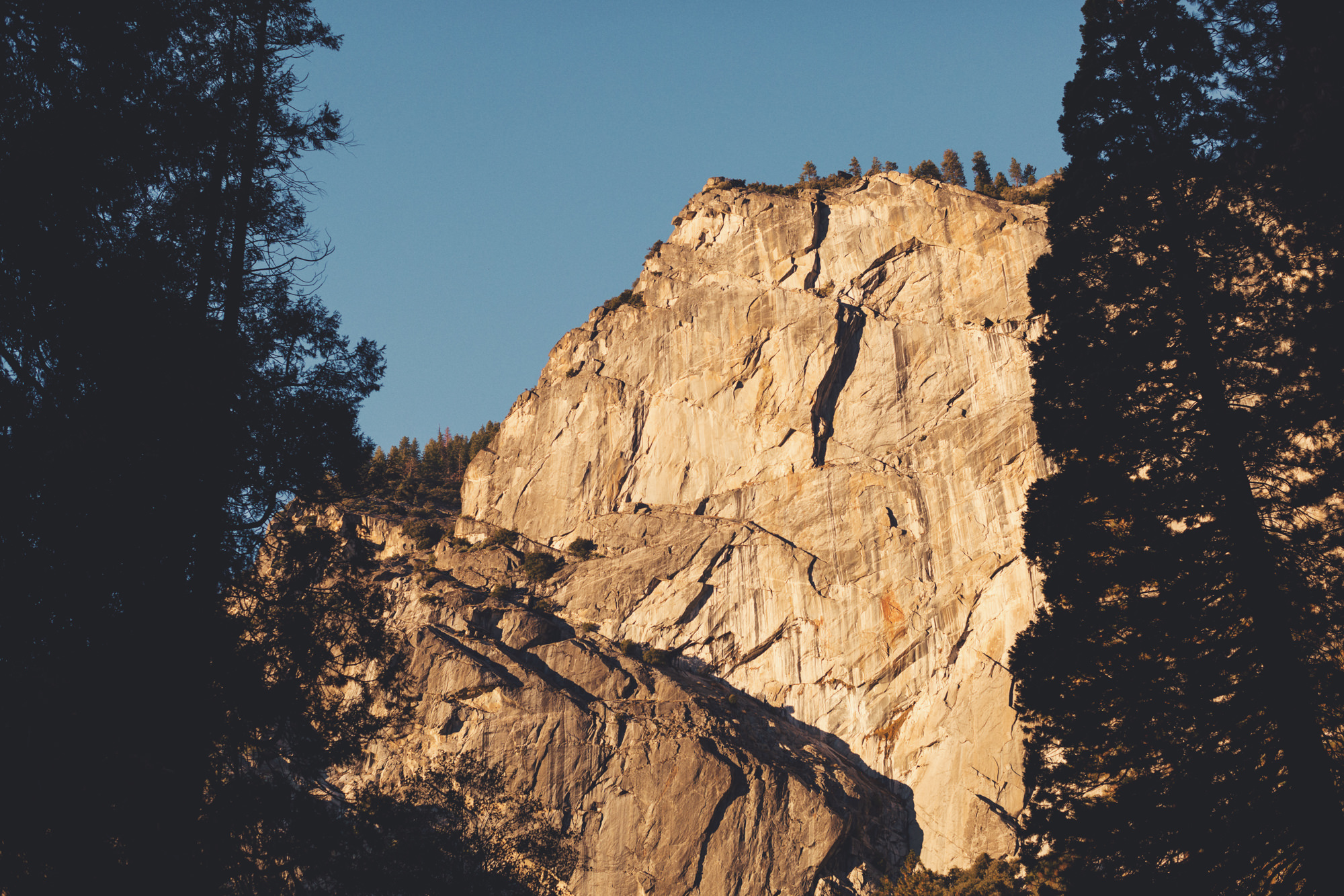 Yosemite wedding ©Anne-Claire Brun 109