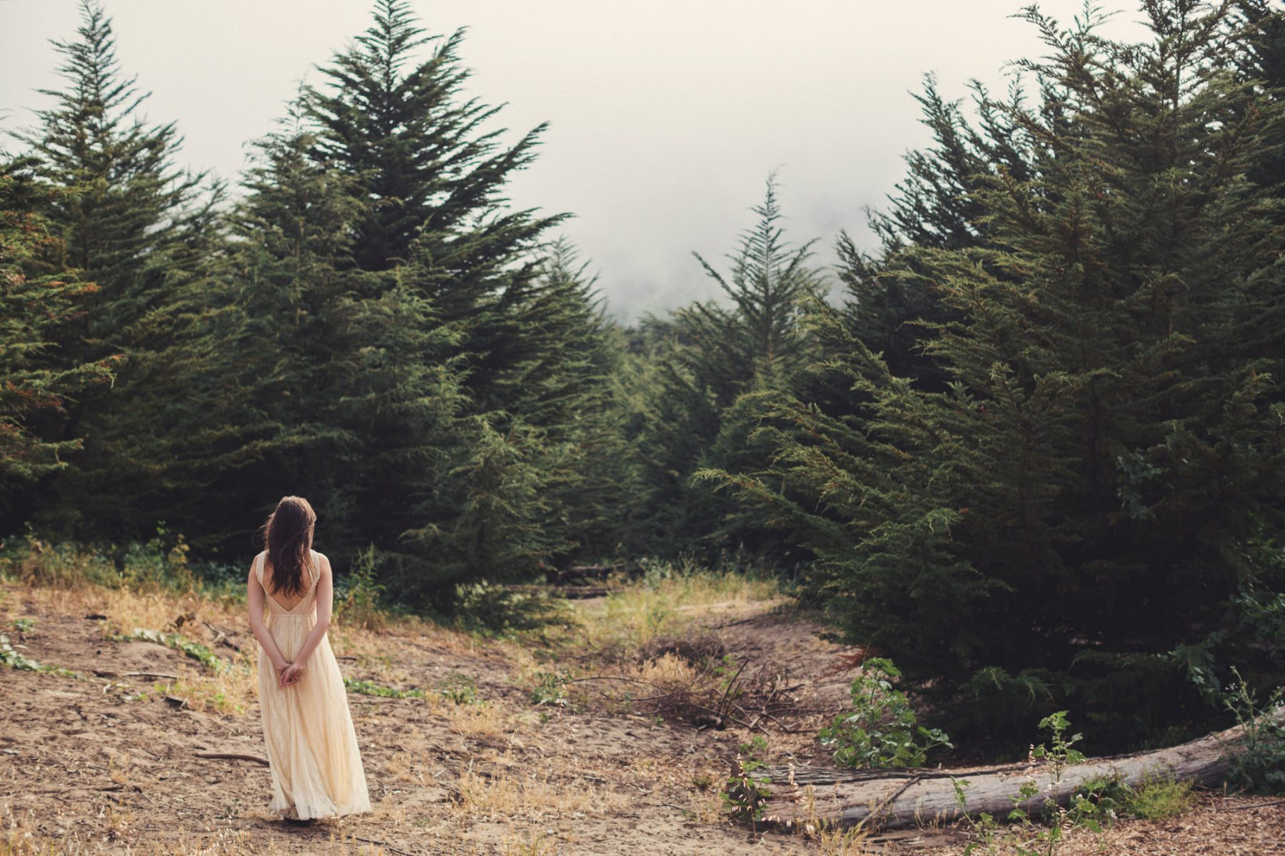 California Wedding photographer -  ©Anne-Claire Brun 110