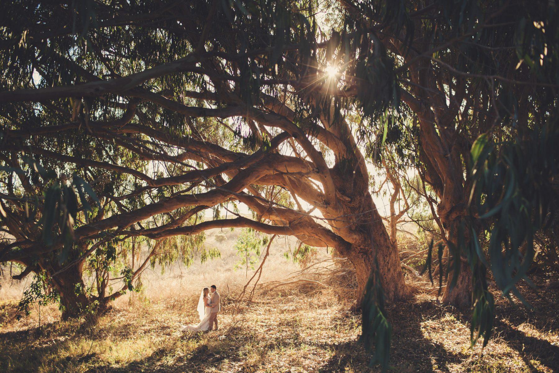 California Wedding photographer -  ©Anne-Claire Brun 147