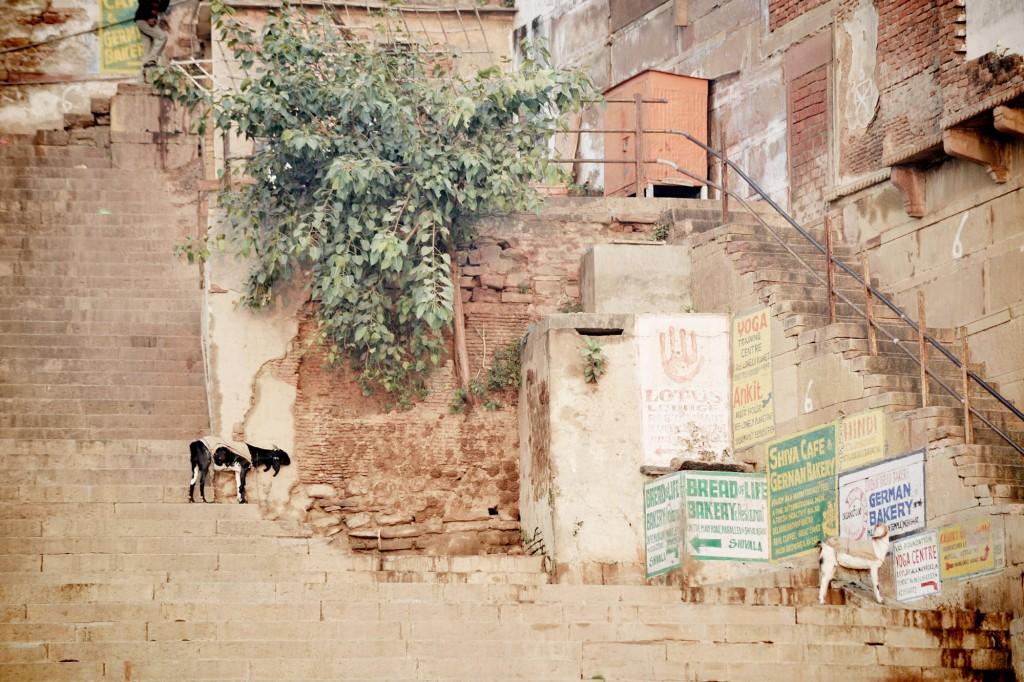 india ©Anne-Claire Brun 103