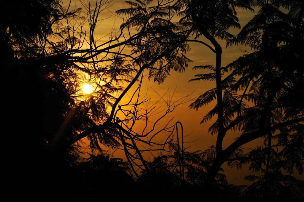 india ©Anne-Claire Brun 153
