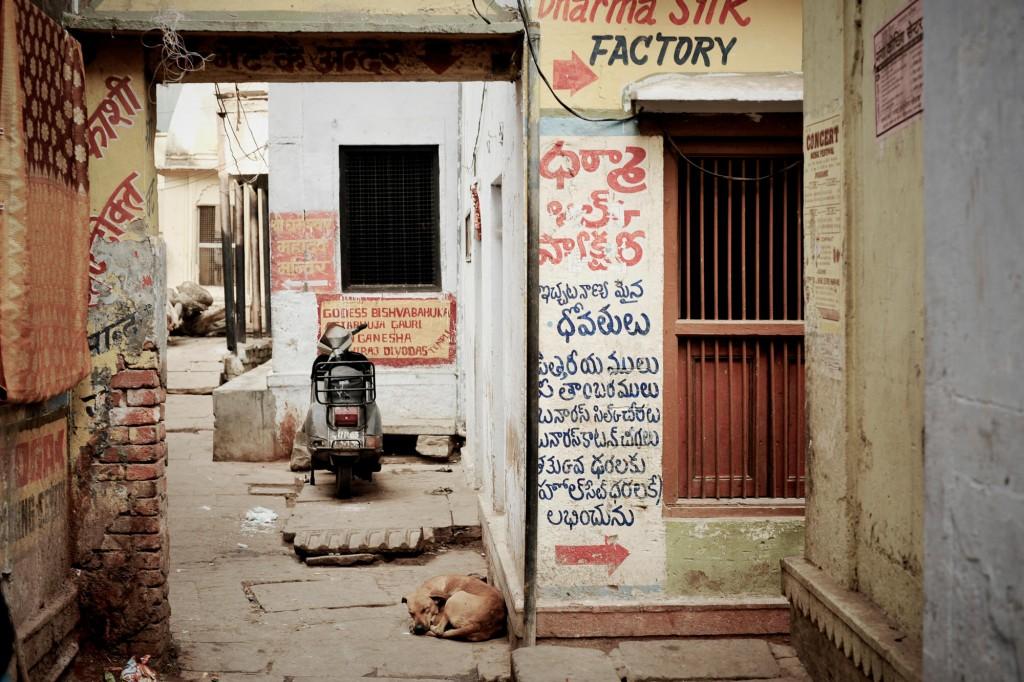 india ©Anne-Claire Brun 88