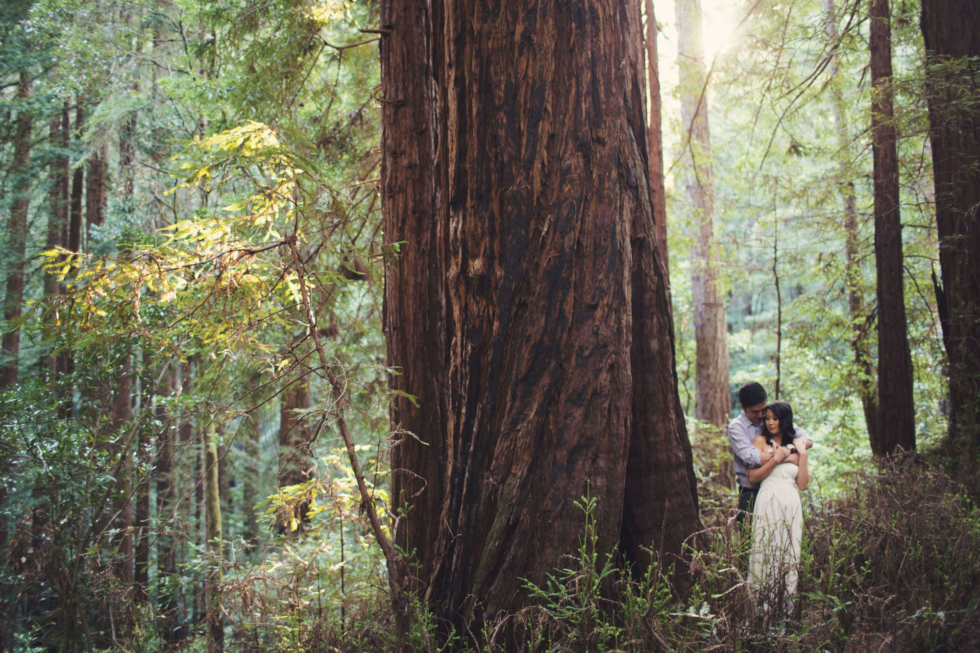 Engagement photos in Muir Woods @Anne-Claire Brun 032