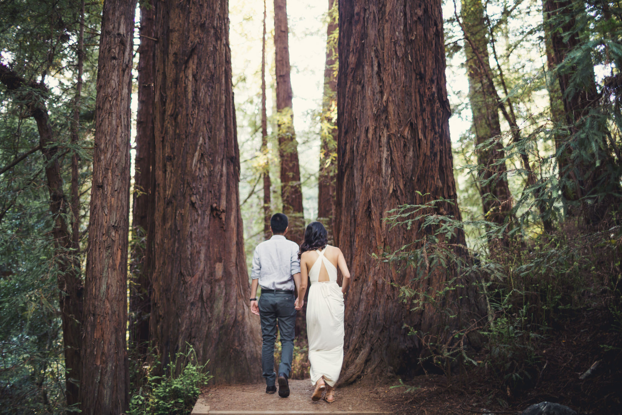 Engagement photos in Muir Woods @Anne-Claire Brun 043