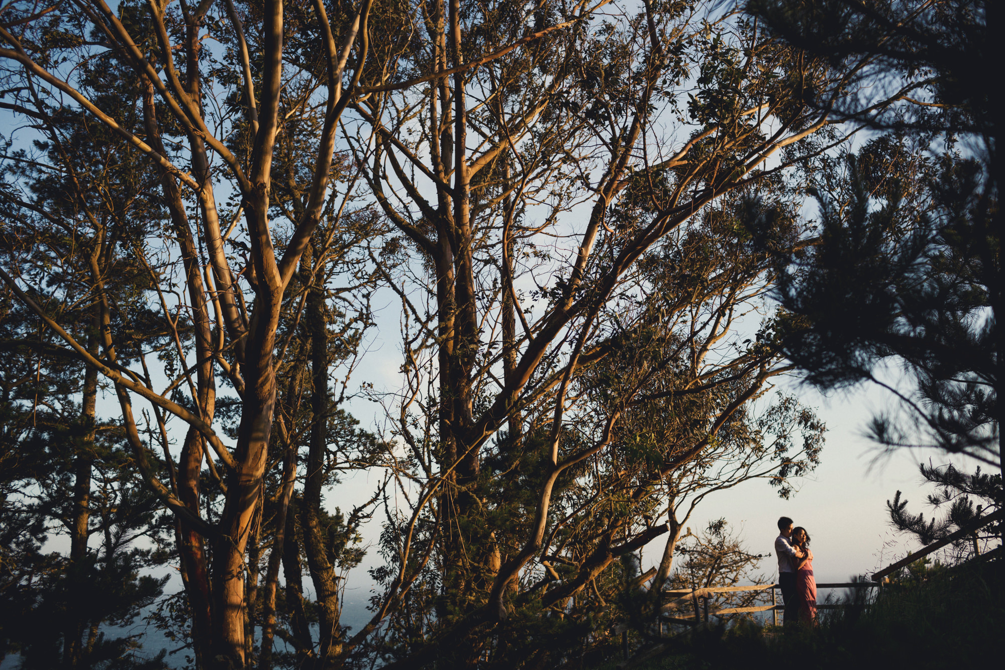 Engagement photos in Muir Woods @Anne-Claire Brun 047
