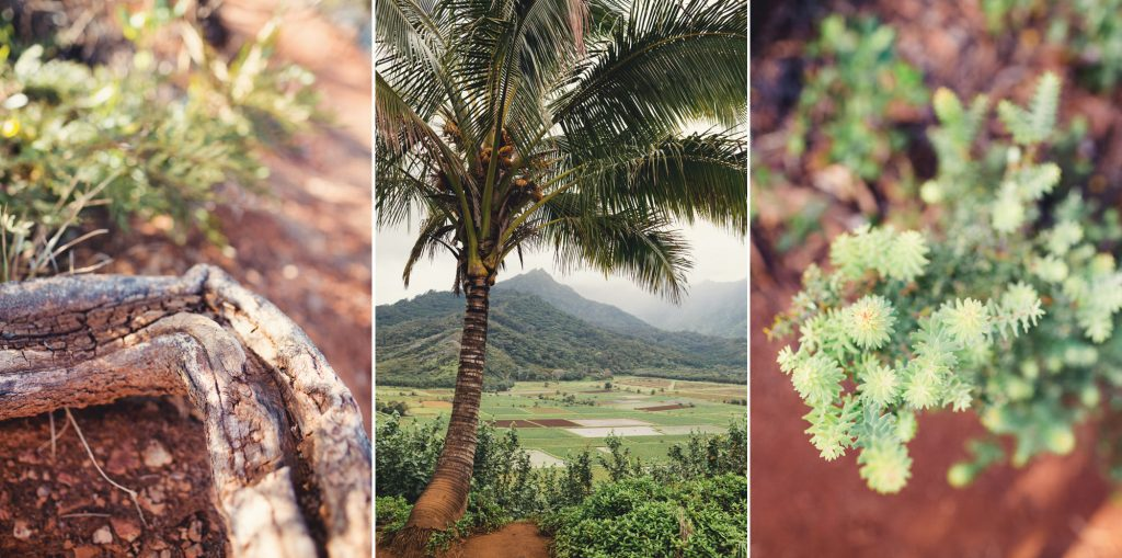 Hawaii Wedding Photographer @Anne-Claire Brun 009