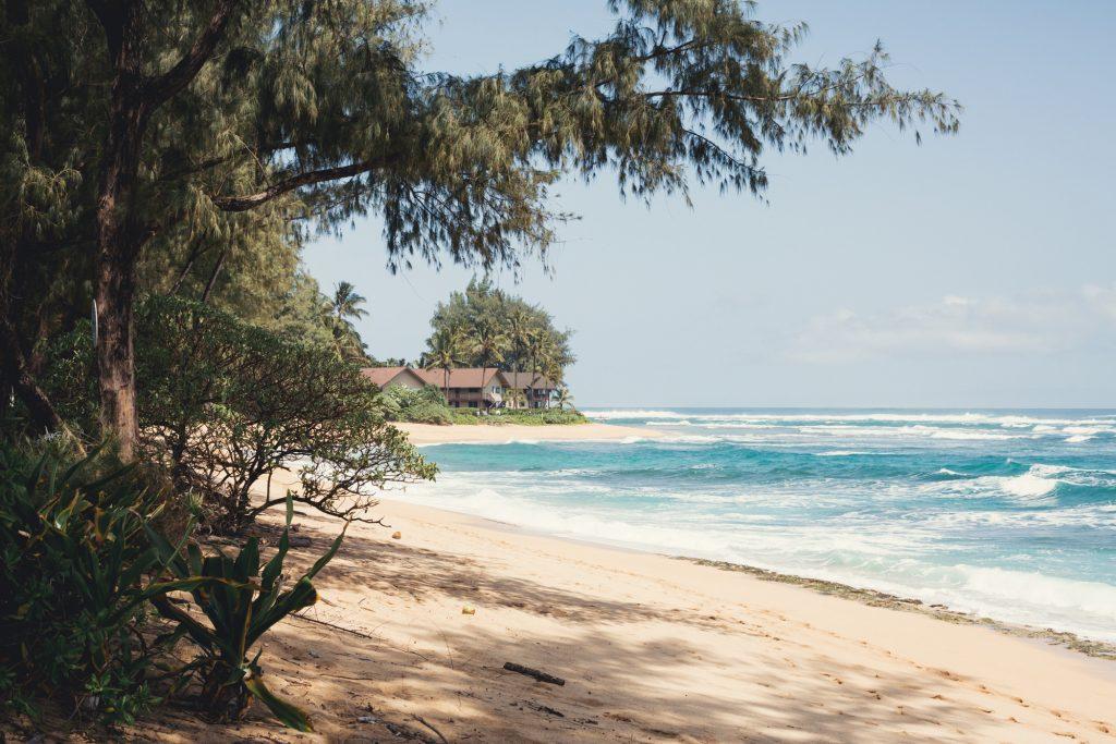 Hawaii Wedding Photographer @Anne-Claire Brun 039