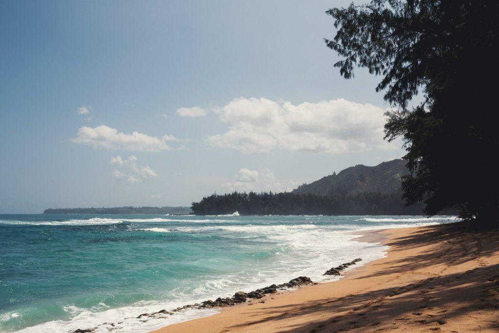 Hawaii Wedding Photographer @Anne-Claire Brun 040