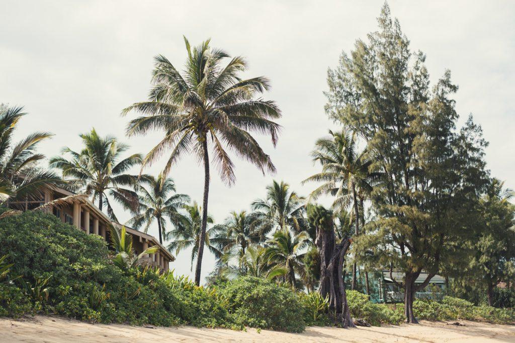 Hawaii Wedding Photographer @Anne-Claire Brun 110