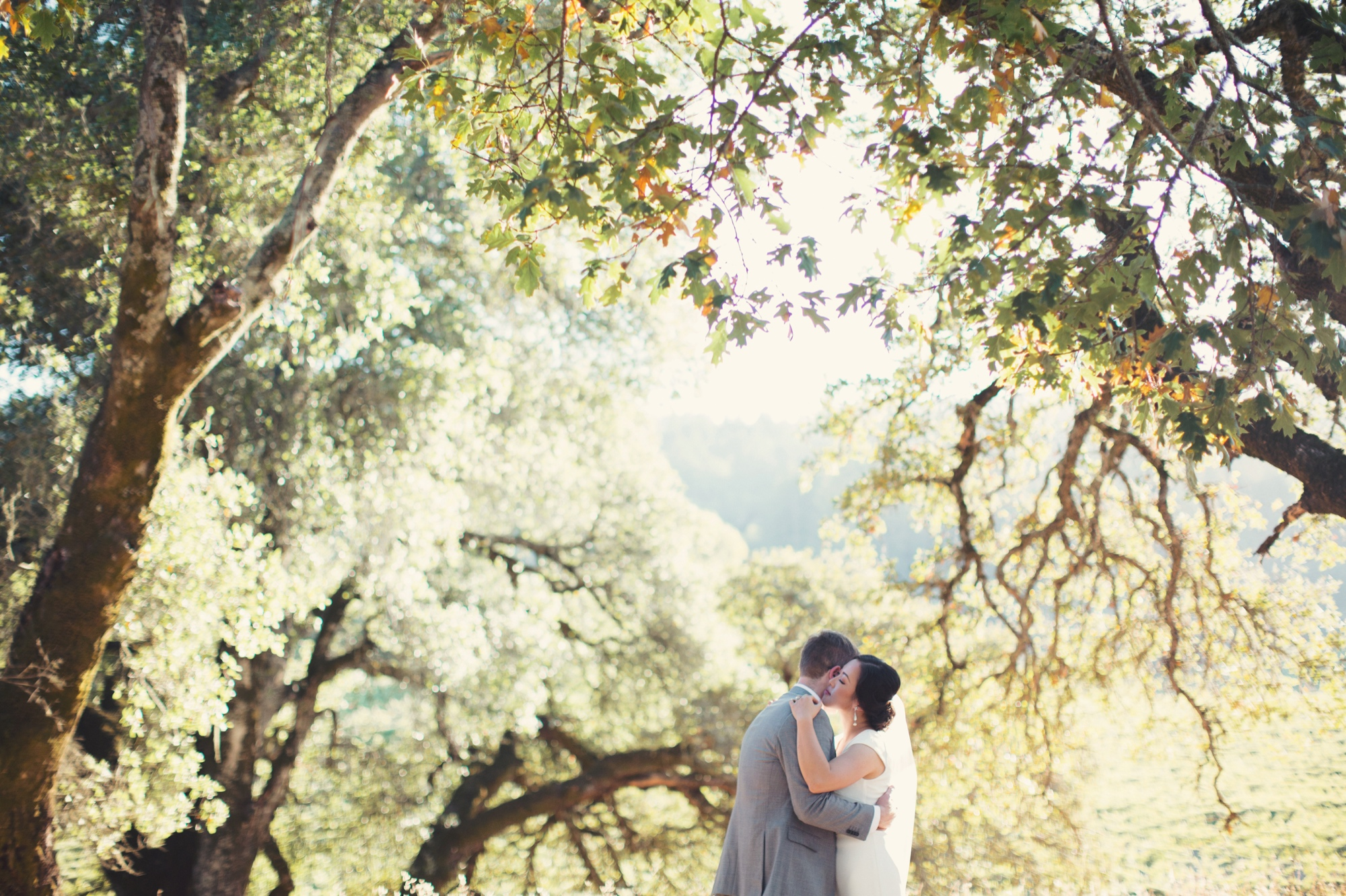 Jack London State Park Wedding