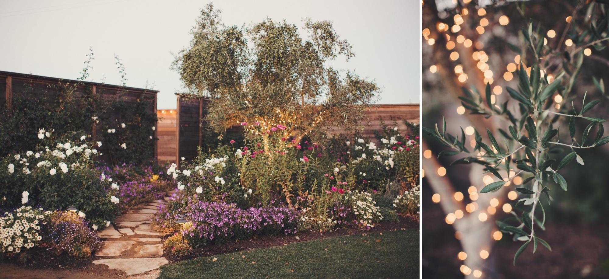 Backyard wedding sonoma