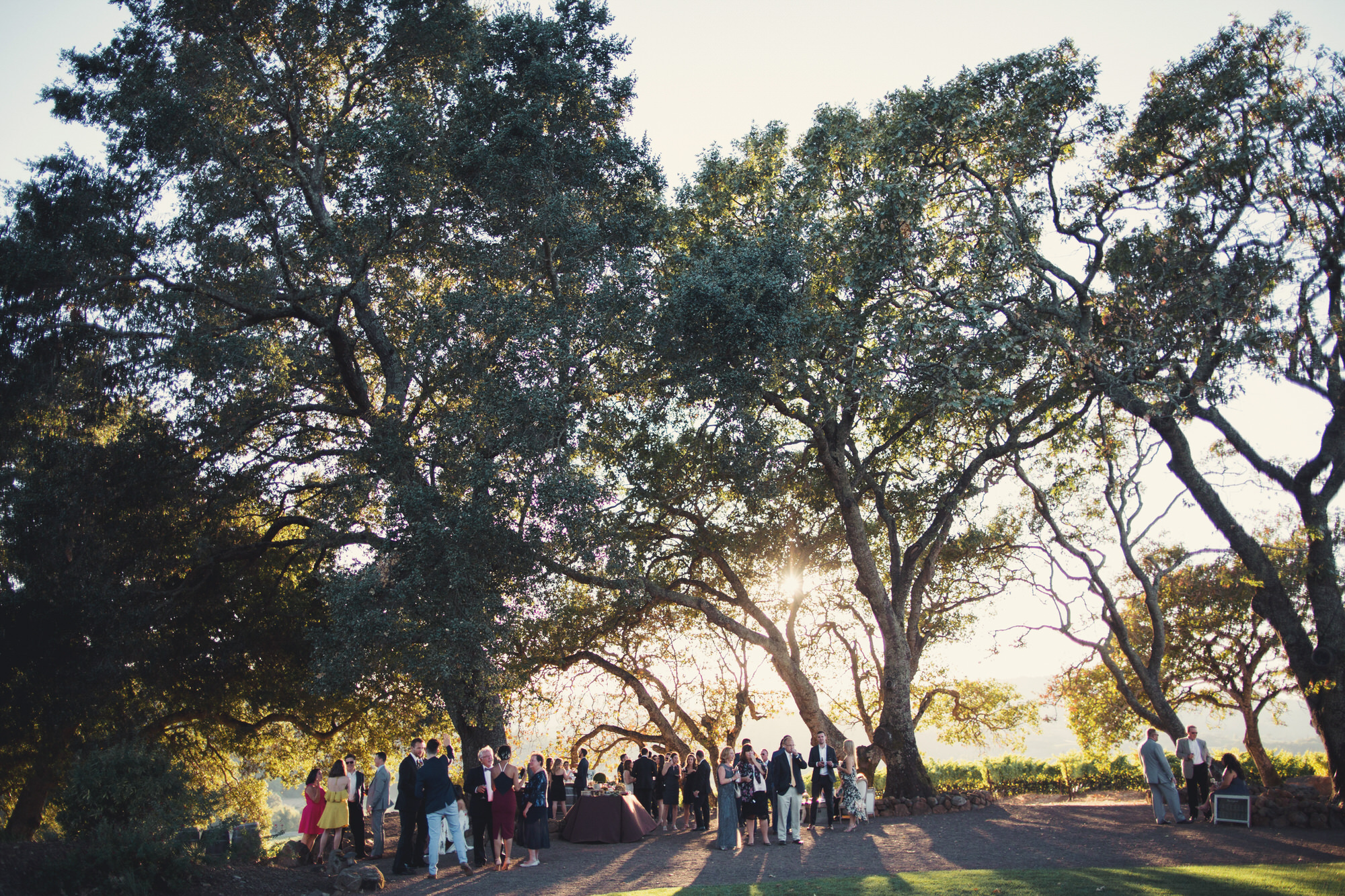 Glen Ellen wedding photographer