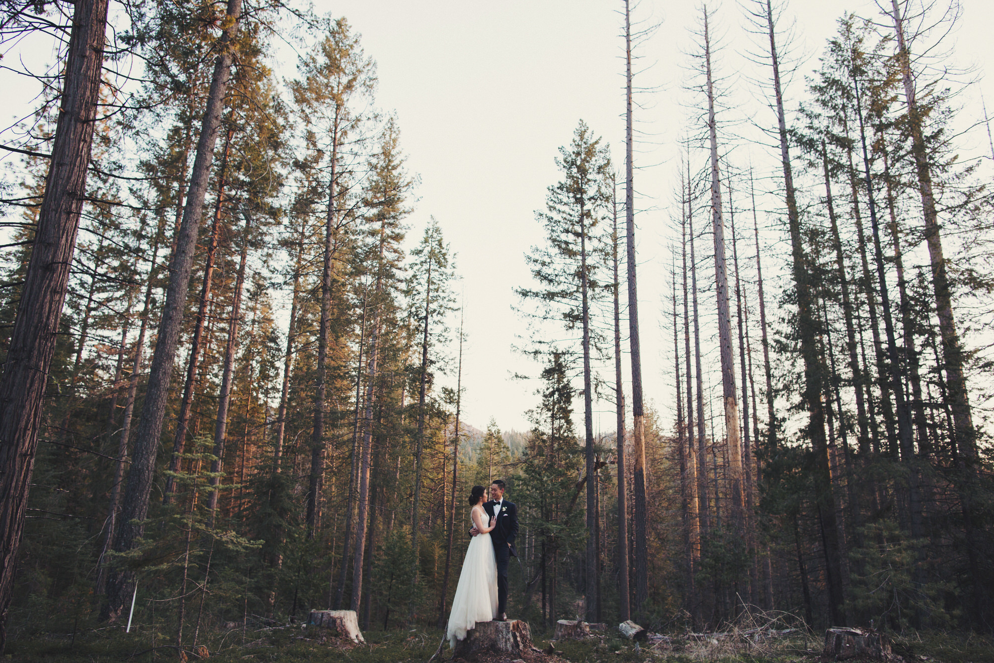 where to get married in yosemite
