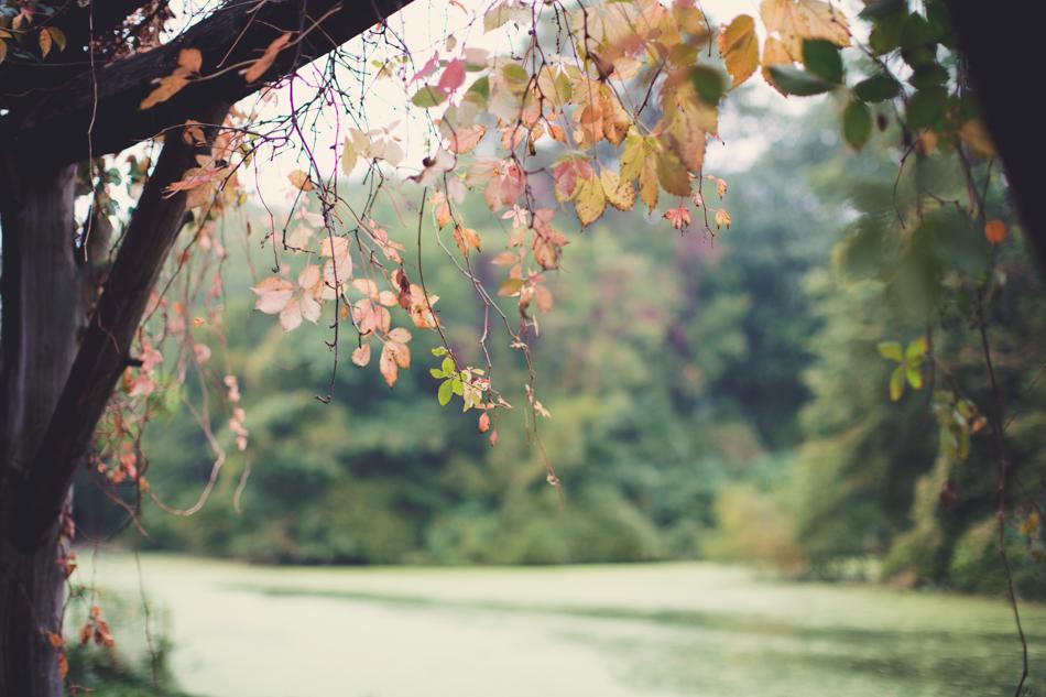 Prospect Park Wedding ©Anne-Claire Brun 031