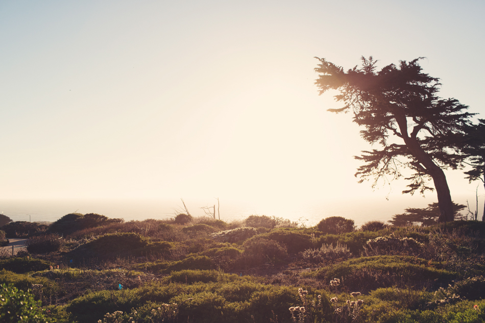 Lifestyle in the Bay Area©Anne-Claire Brun023