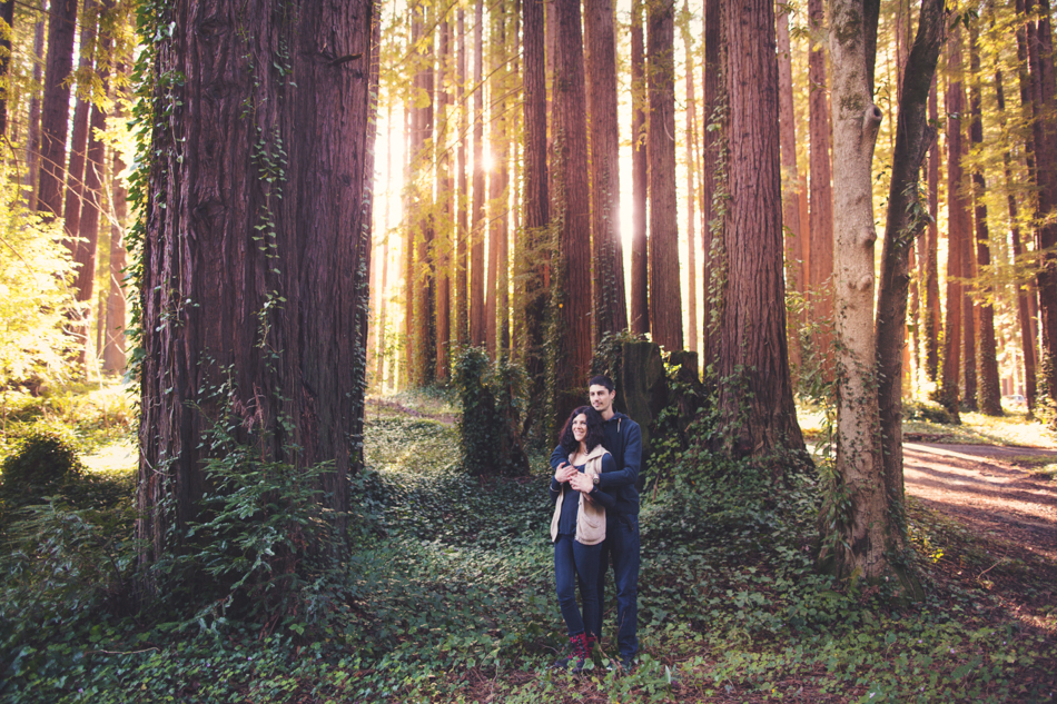 Engagement pictures in redwood ©Anne-Claire Brun001
