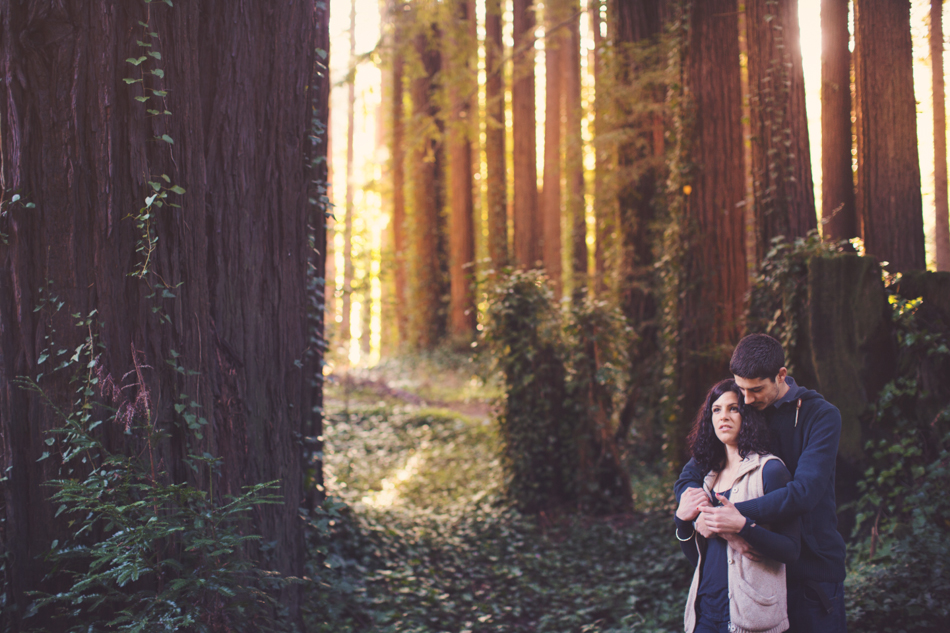 Engagement pictures in redwood ©Anne-Claire Brun003