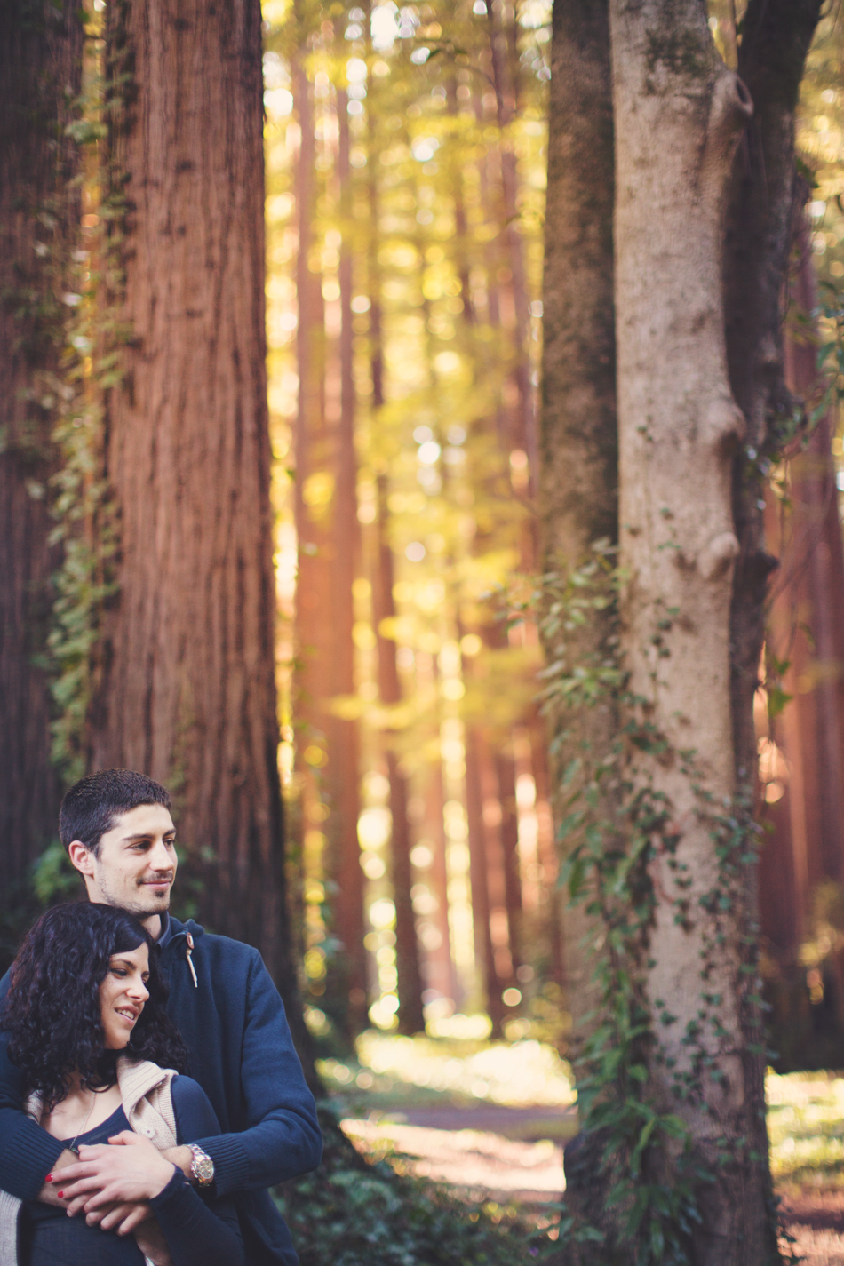 Engagement pictures in redwood ©Anne-Claire Brun005