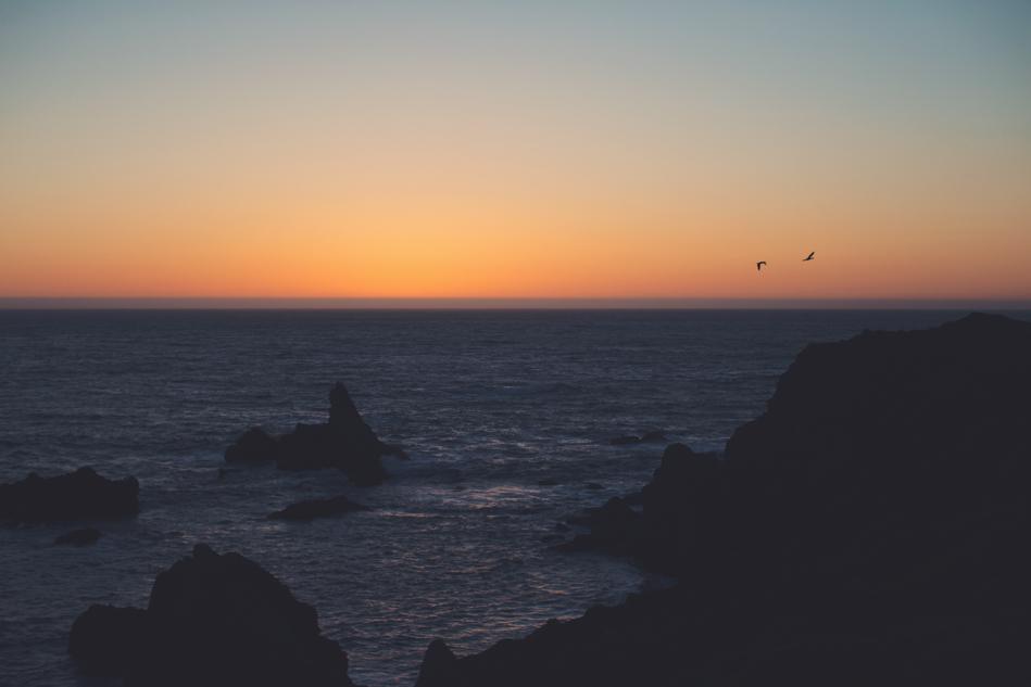 Love in Sonoma County ©Anne-Claire Brun078