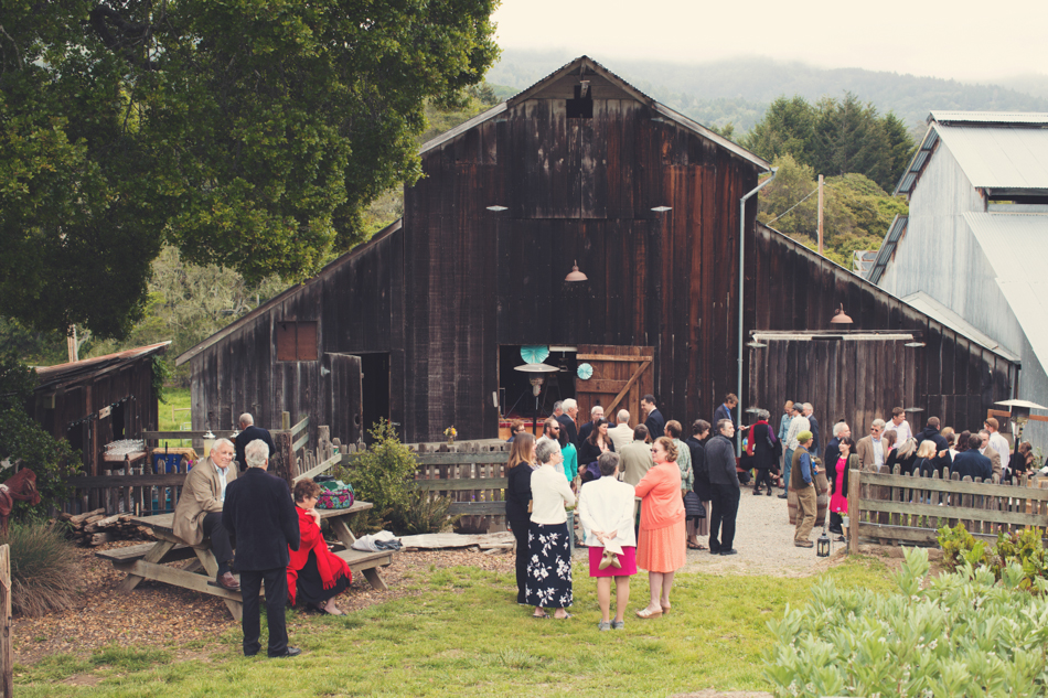Barn wedding Bolinas - Mann Family Farm ©Anne-Claire Brun0060