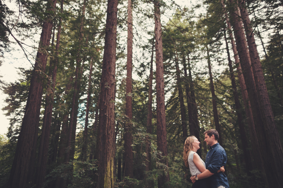 Engagement Session in Berkeley Redwood Forrest ©Anne-Claire Brun 0001
