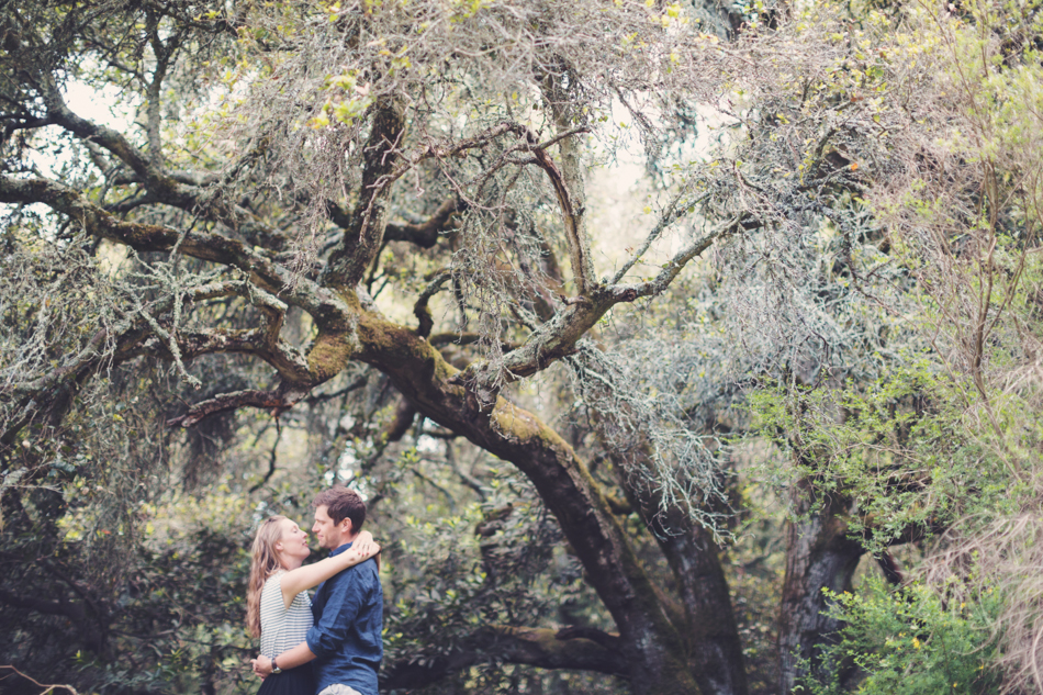 Engagement Session in Berkeley Redwood Forrest ©Anne-Claire Brun 0020