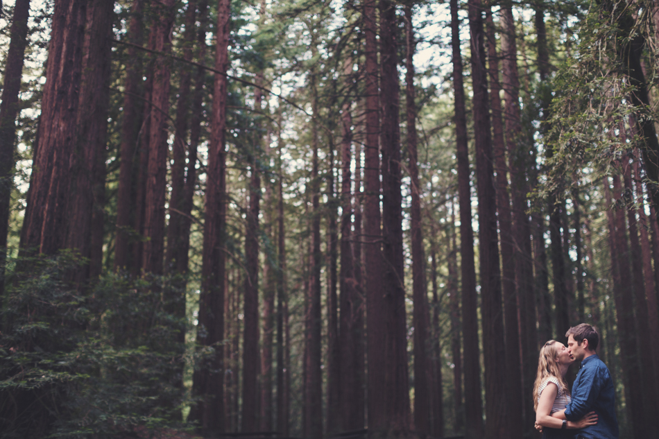 Engagement Session in Berkeley Redwood Forrest ©Anne-Claire Brun 0029
