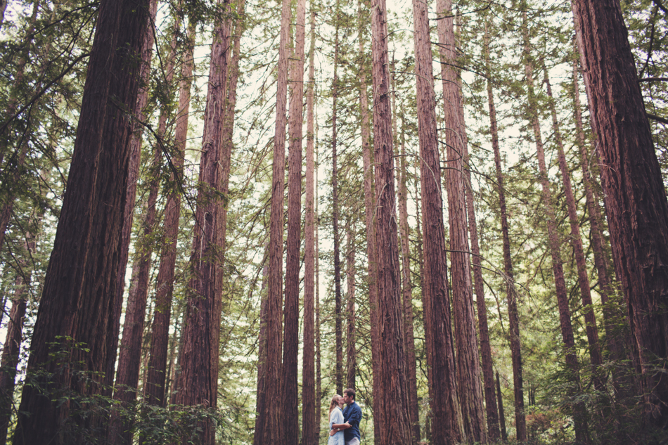 Engagement Session in Berkeley Redwood Forrest ©Anne-Claire Brun 0033