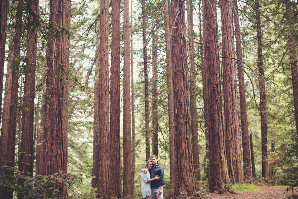 Engagement Session in Berkeley Redwood Forrest ©Anne-Claire Brun 0034