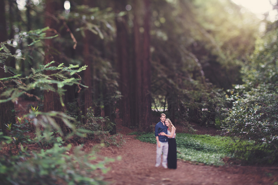 Engagement-Session-in-Berkeley-Redwood-Forrest-Anne-Claire-Brun-0005