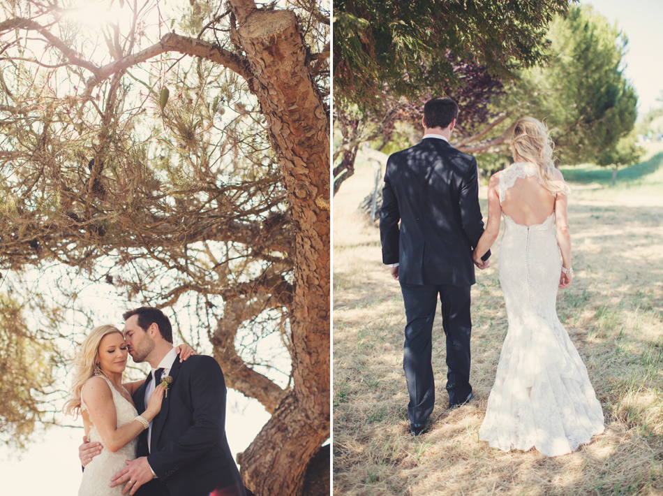 Gloria Ferrer Wedding Elopement in Napa Vineyard ©Anne-Claire Brun 0073