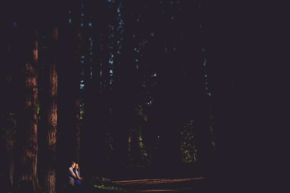 Engagement session in Sonoma County @Anne-Claire Brun 0015